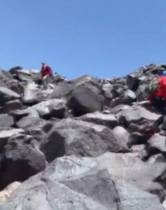 Read more about the article Moment An Albino Bear Attempts To Attack Mountaineers In Turkey