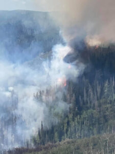 Read more about the article A Wildfire Has Been Burning For Over A Week And Charring Over 1,000 Acres Of Land In Utah