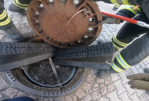 Firefighters Rescue Fat Rat Stuck In Manhole Cover